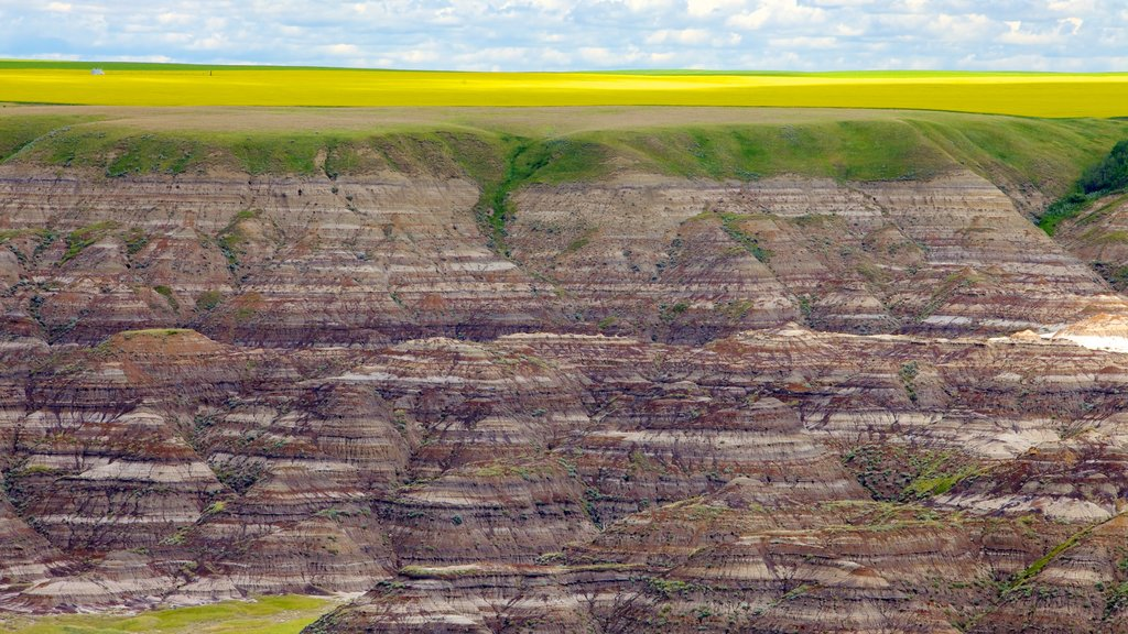 Drumheller Valley which includes landscape views and a gorge or canyon