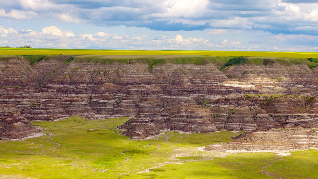Drumheller Valley which includes tranquil scenes, landscape views and a gorge or canyon