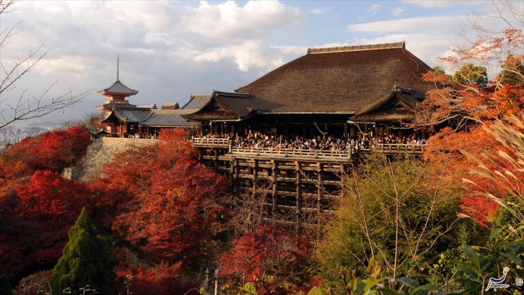 Kiyomizu Temple which includes a temple or place of worship and religious aspects