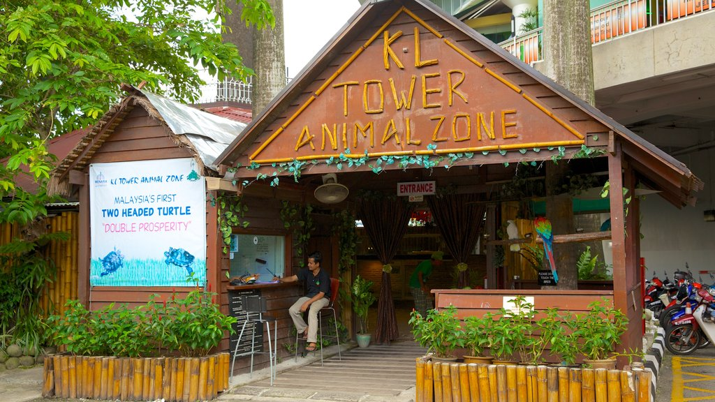 Kuala Lumpur Tower which includes zoo animals and signage