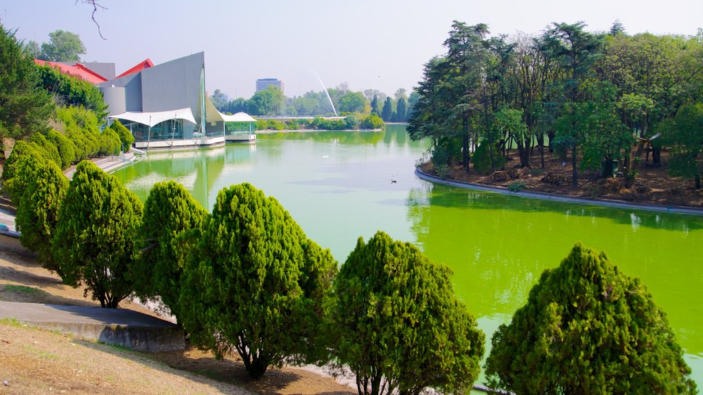 Chapultepec Park featuring a river or creek and a garden