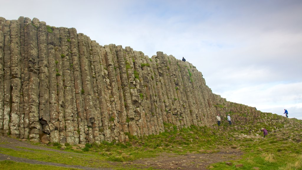 Giant\'s Causeway featuring a gorge or canyon, tranquil scenes and hiking or walking