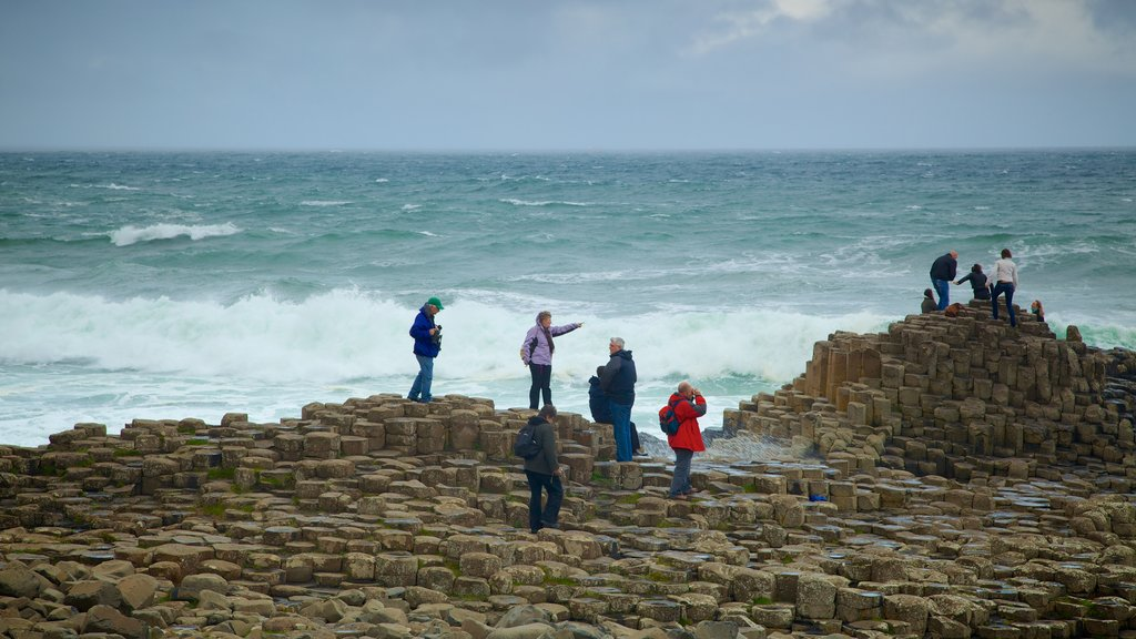 Giant\'s Causeway featuring surf and rugged coastline as well as a small group of people