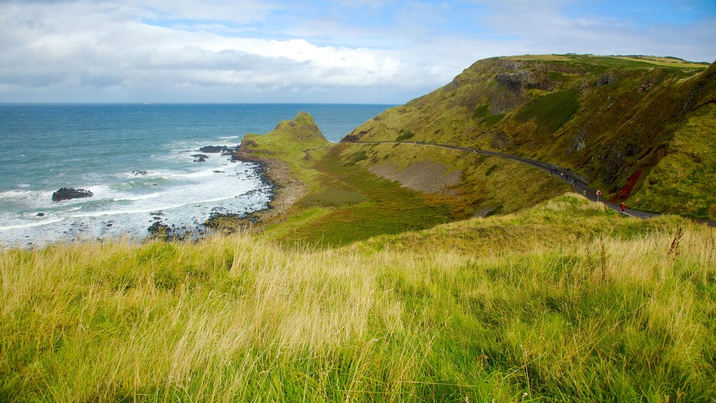 Giant\'s Causeway showing landscape views, rugged coastline and general coastal views