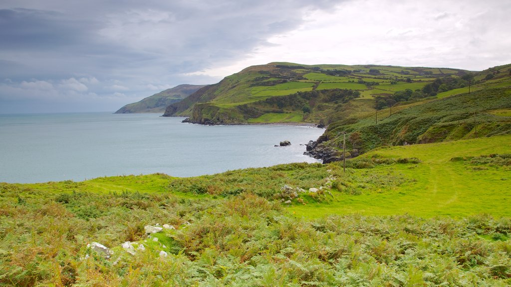 Torr Head featuring landscape views, tranquil scenes and rugged coastline
