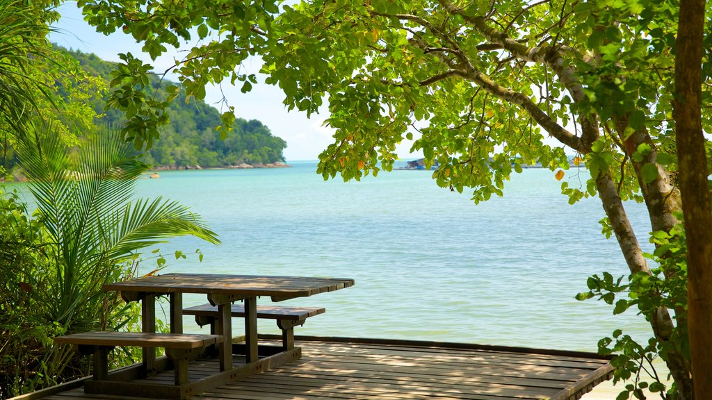 Penang National Park which includes general coastal views, tropical scenes and views