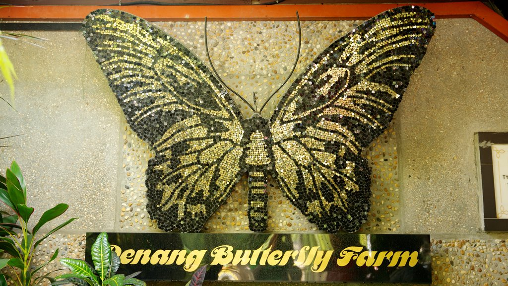 Butterfly Farm which includes zoo animals and signage