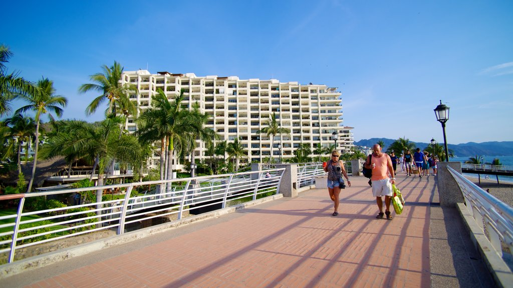 Bay of Banderas featuring tropical scenes and a luxury hotel or resort as well as a couple