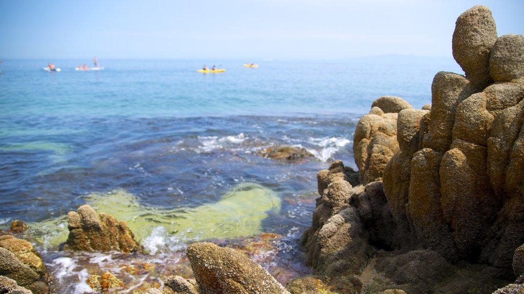 Las Caletas featuring rocky coastline