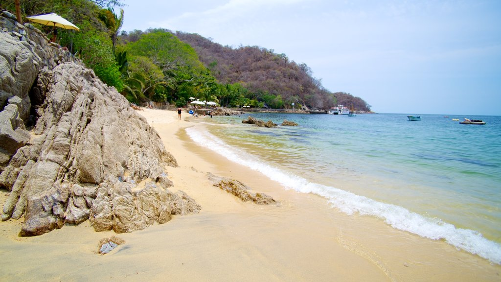Puerto Vallarta showing a beach, a bay or harbor and tropical scenes