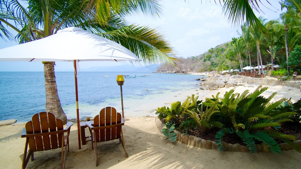 Las Caletas which includes a beach, a luxury hotel or resort and tropical scenes