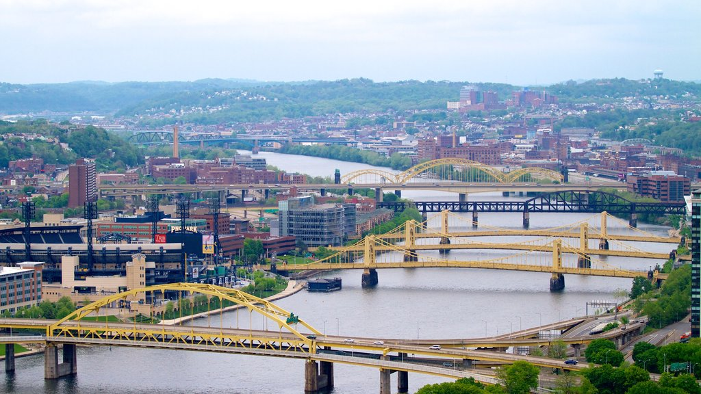 Roberto Clemente Bridge showing a river or creek, a city and a bridge
