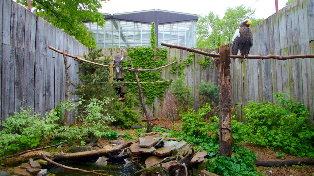 National Aviary which includes zoo animals and bird life