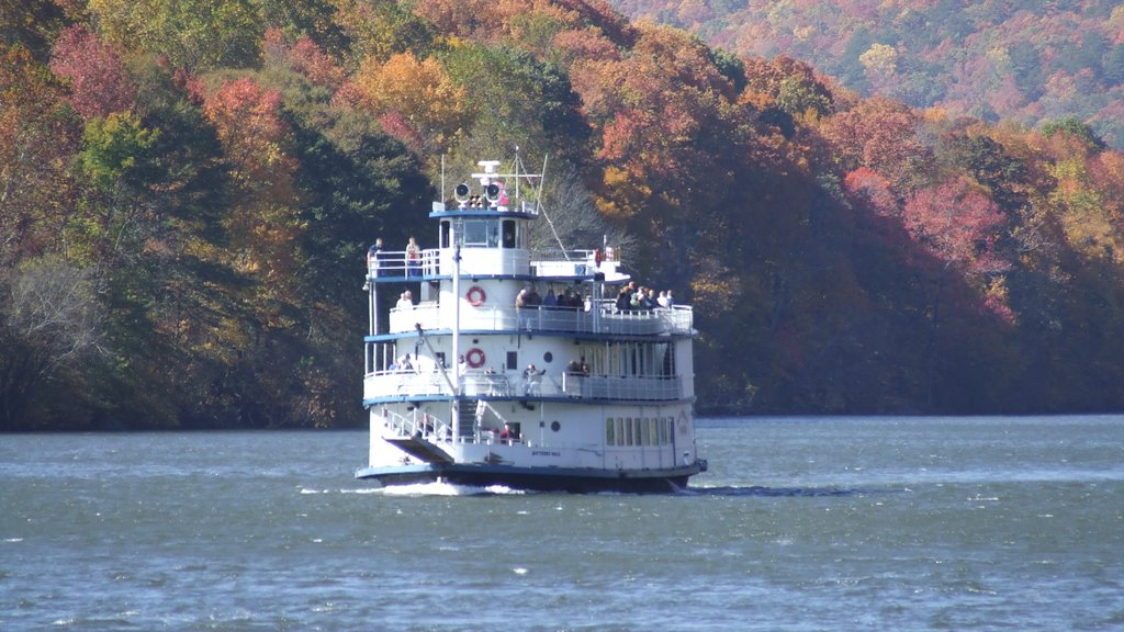Chattanooga featuring boating, forests and a ferry