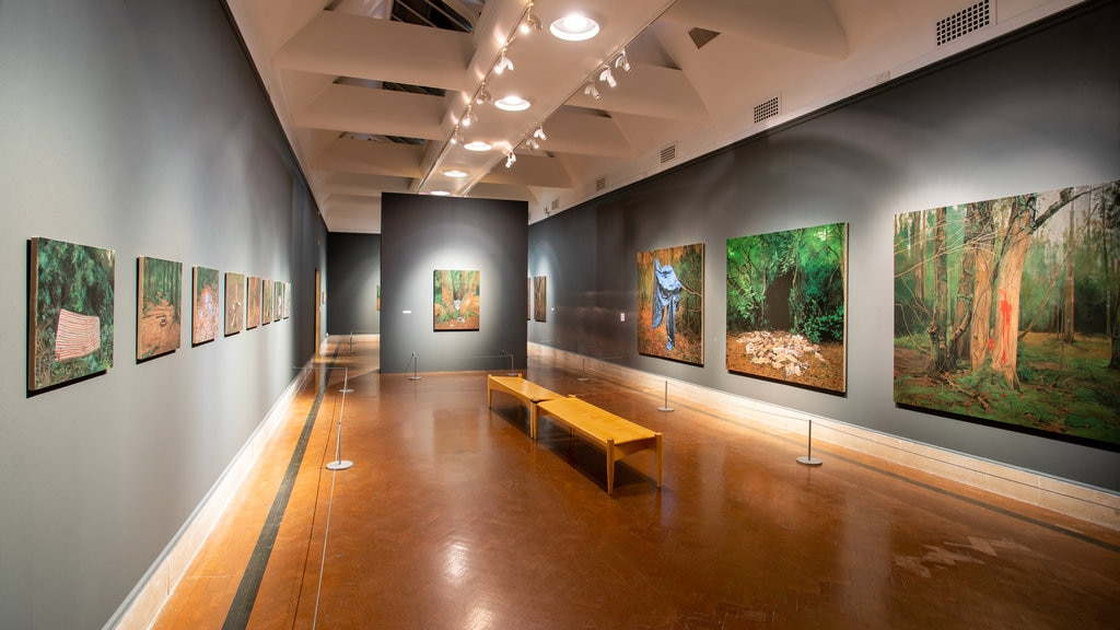 Southampton City Art Gallery showing interior views and art