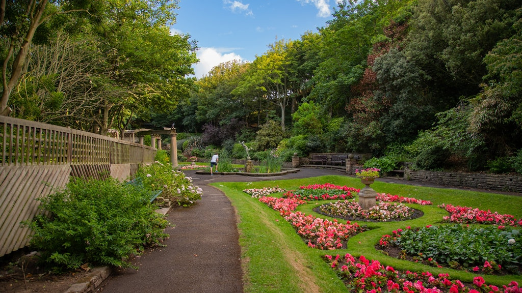 South Cliff Italian Gardens featuring a garden and flowers