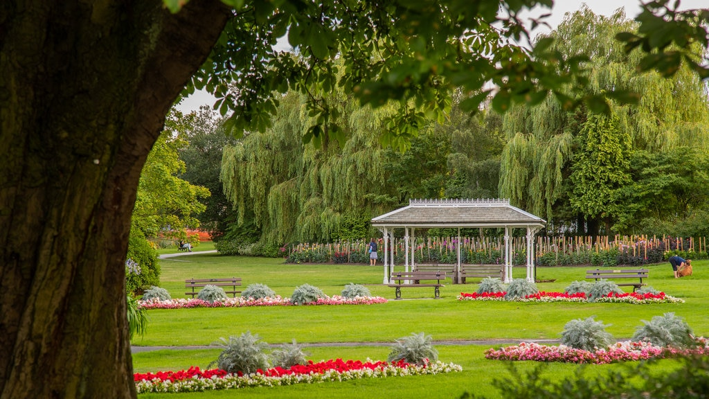 Valley Gardens featuring flowers and a park