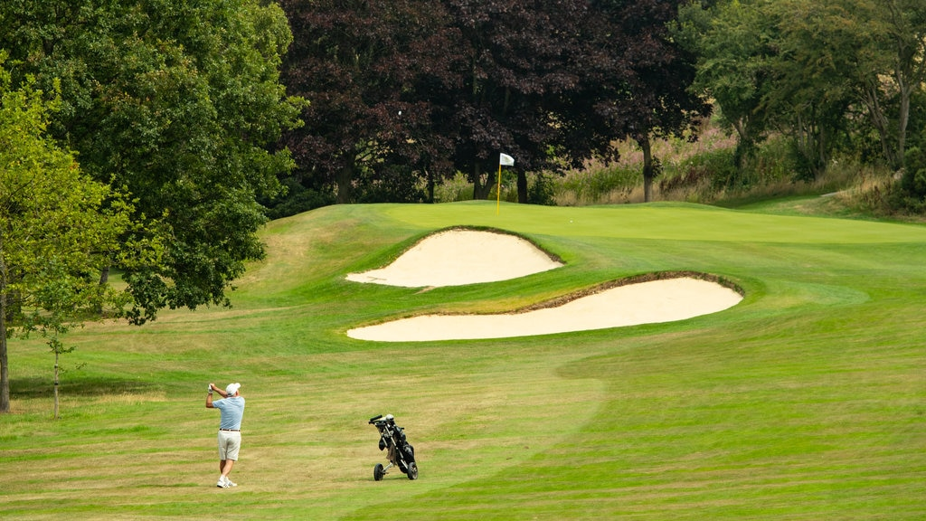 Pannal Golf Club which includes golf as well as an individual male