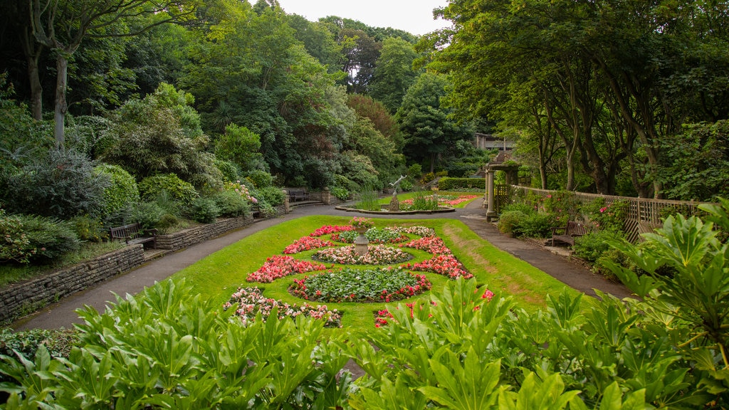South Cliff Italian Gardens which includes a park and flowers