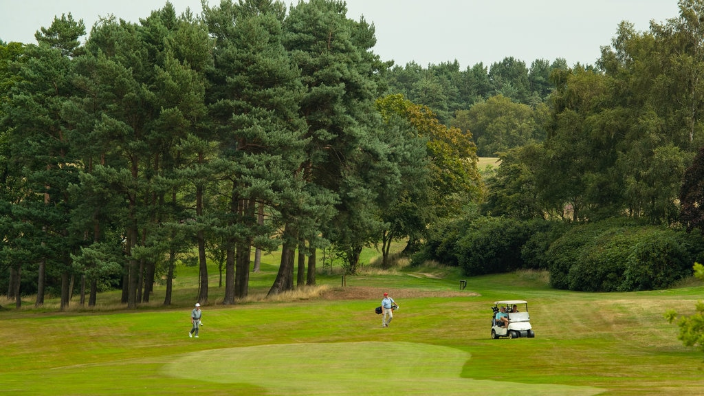 Pannal Golf Club showing golf
