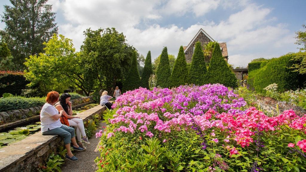 Jardín York Gate mostrando un jardín y flores