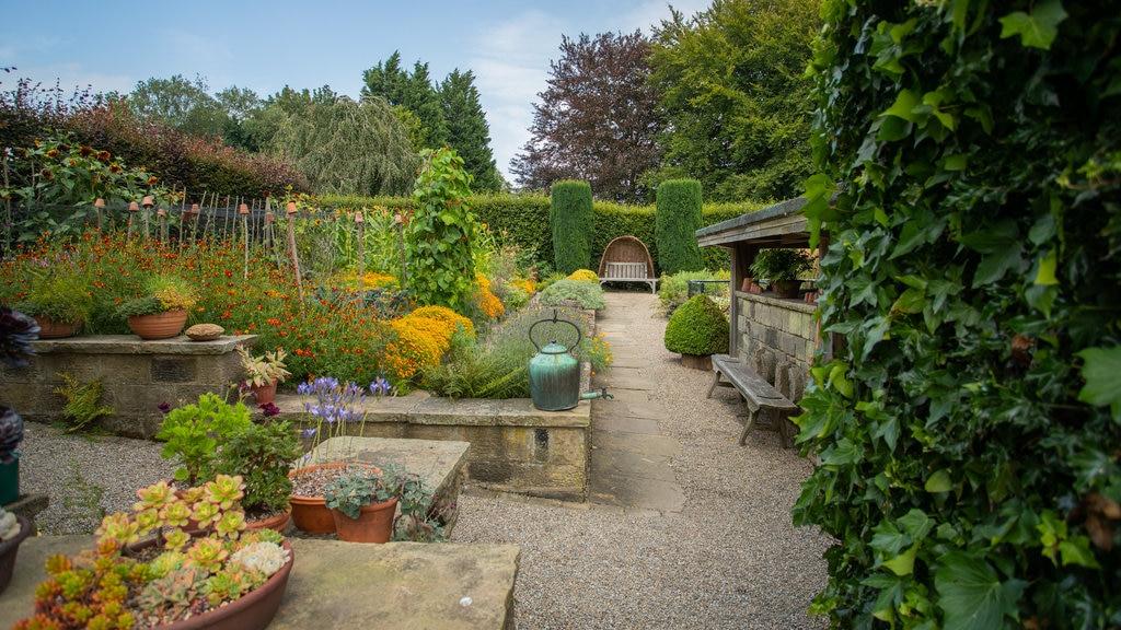 Jardín York Gate ofreciendo un jardín, flores silvestres y flores