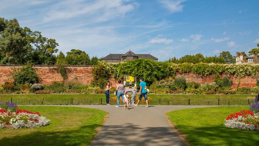 Canal Gardens mostrando un parque y flores y también una familia