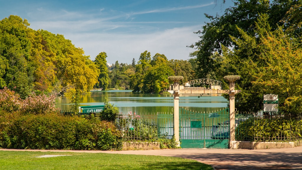 Tete d\'Or Park featuring a garden and a lake or waterhole