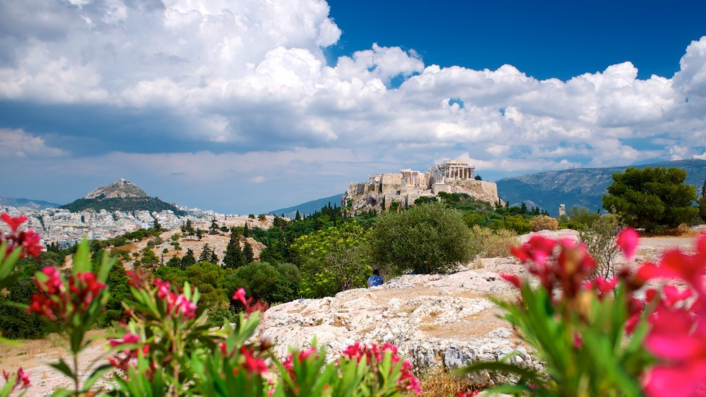 Acropolis featuring landscape views, heritage architecture and flowers