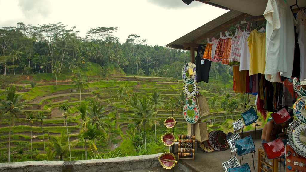 Tegallalang Village showing markets, farmland and a small town or village