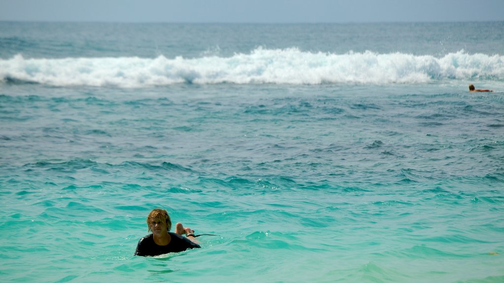 Uluwatu Beach which includes surfing, tropical scenes and waves