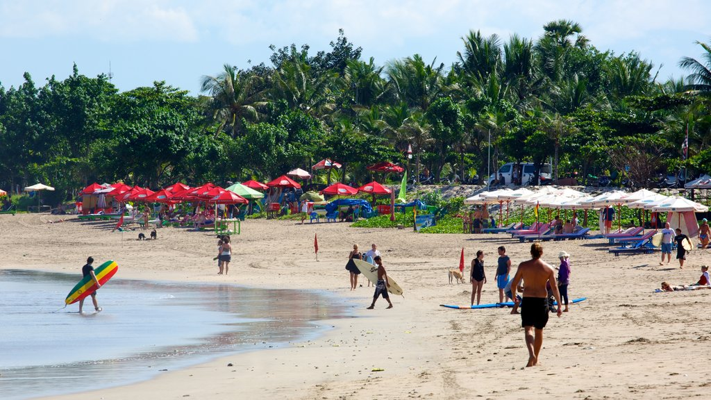 Kuta Beach which includes surfing, tropical scenes and a sandy beach