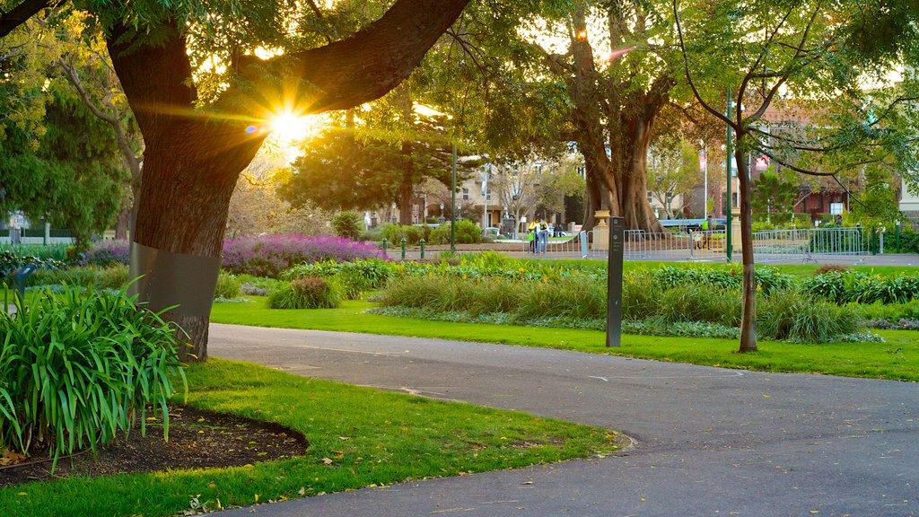 Carlton Gardens showing a garden and a sunset