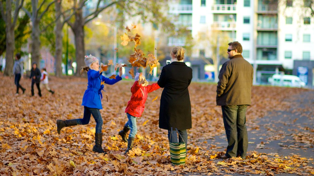 Carlton Gardens featuring a park and autumn leaves as well as a family