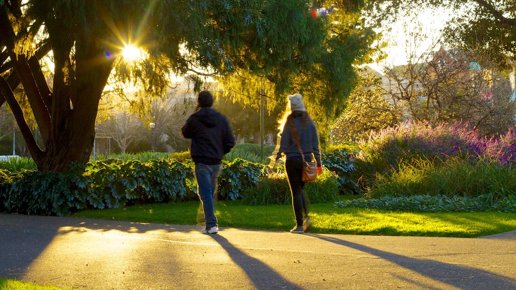 Carlton Gardens featuring hiking or walking, a garden and a sunset