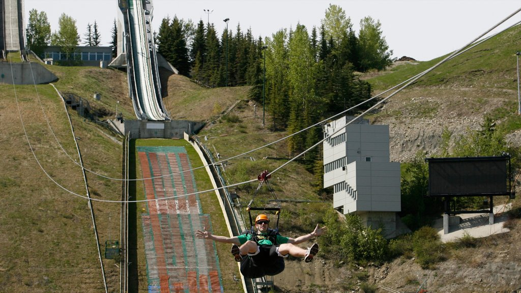 Canada Olympic Park which includes zip lining as well as an individual male