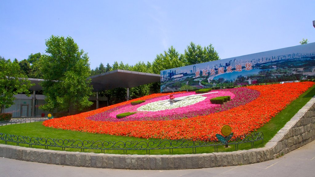 Century Park which includes flowers and a garden