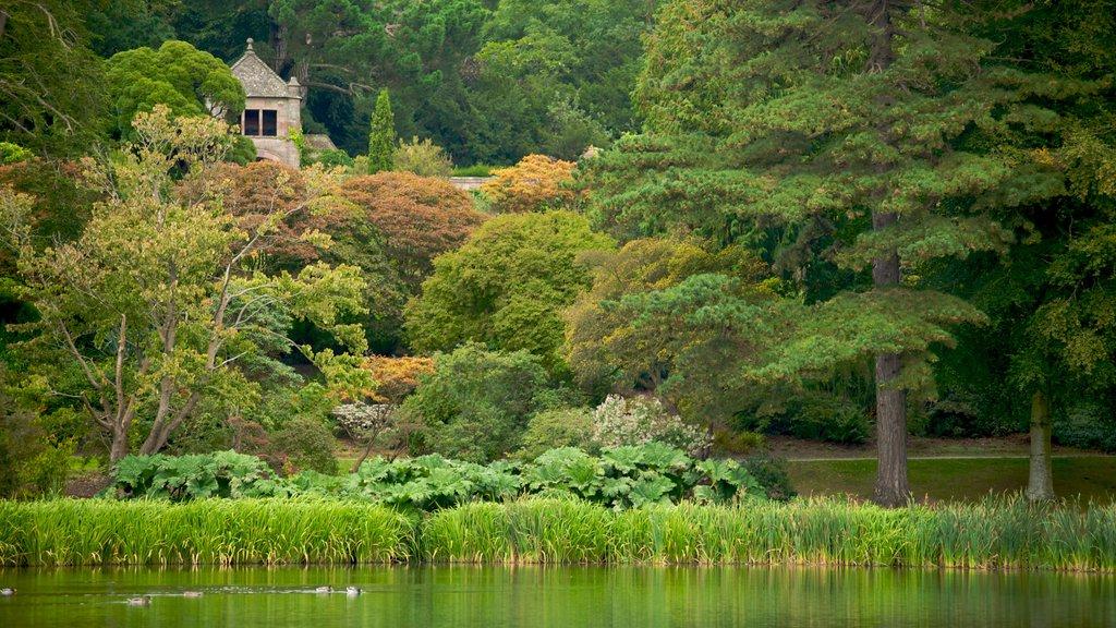 Casa y jardines Mount Stewart ofreciendo un lago o abrevadero, escenas forestales y un parque