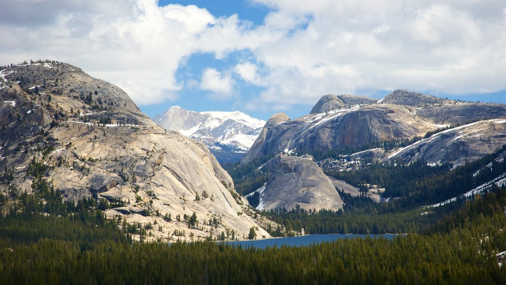 Tenaya Lake featuring tranquil scenes, landscape views and mountains
