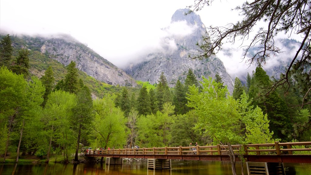 Swinging Bridge Picnic Area featuring mist or fog, mountains and a river or creek