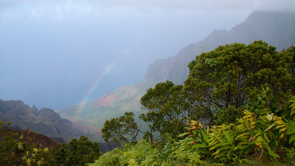 Kalalau Lookout featuring mountains, mist or fog and landscape views