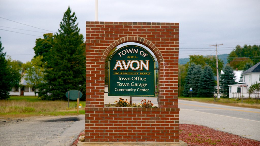 Avon showing signage and a small town or village