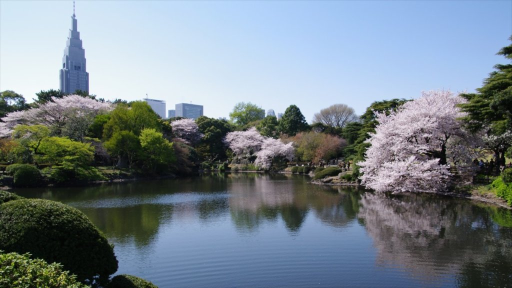 Shinjuku featuring a park and a lake or waterhole