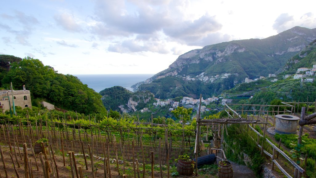 Ravello featuring landscape views, farmland and mountains