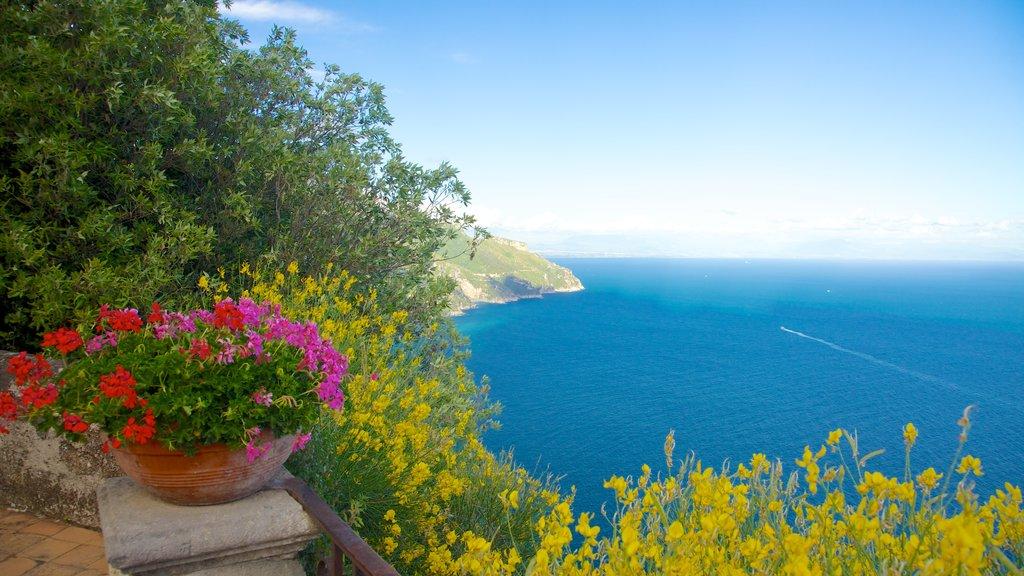 Amalfi Coast showing general coastal views, flowers and landscape views