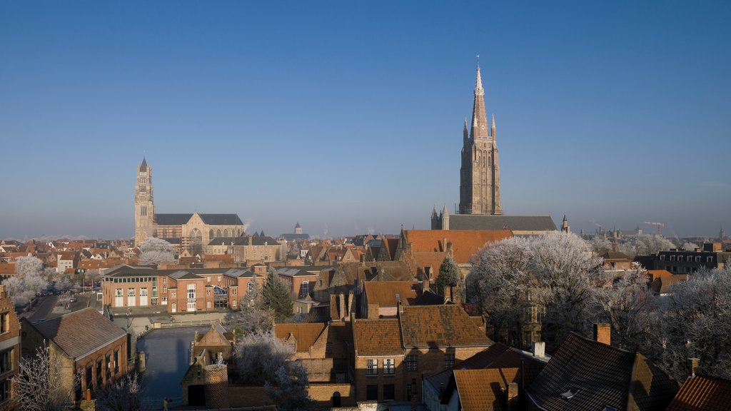 Bruges featuring a church or cathedral and a city