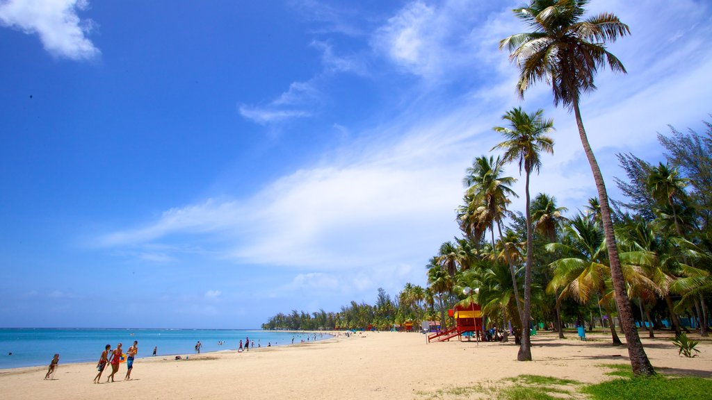 Luquillo Beach which includes tropical scenes and a beach