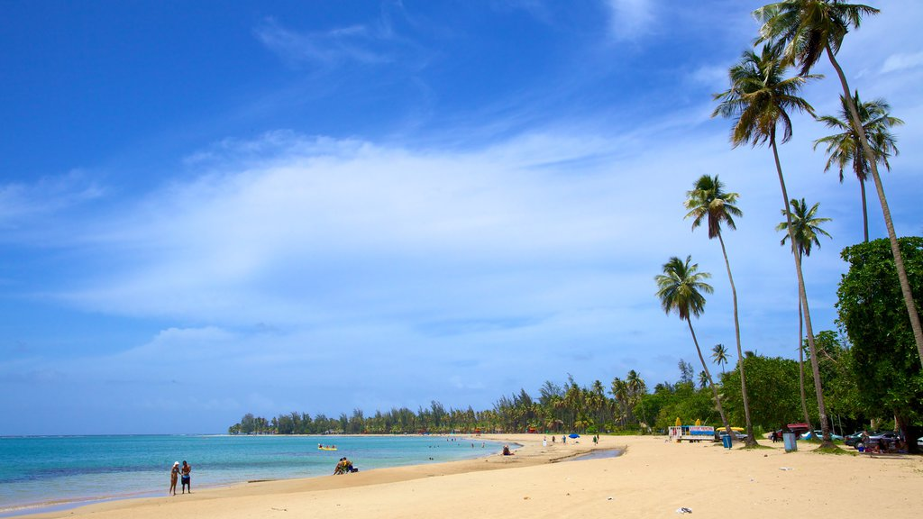 Luquillo Beach which includes a beach and a bay or harbor
