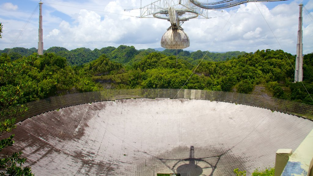 Arecibo Observatory showing forest scenes and an observatory