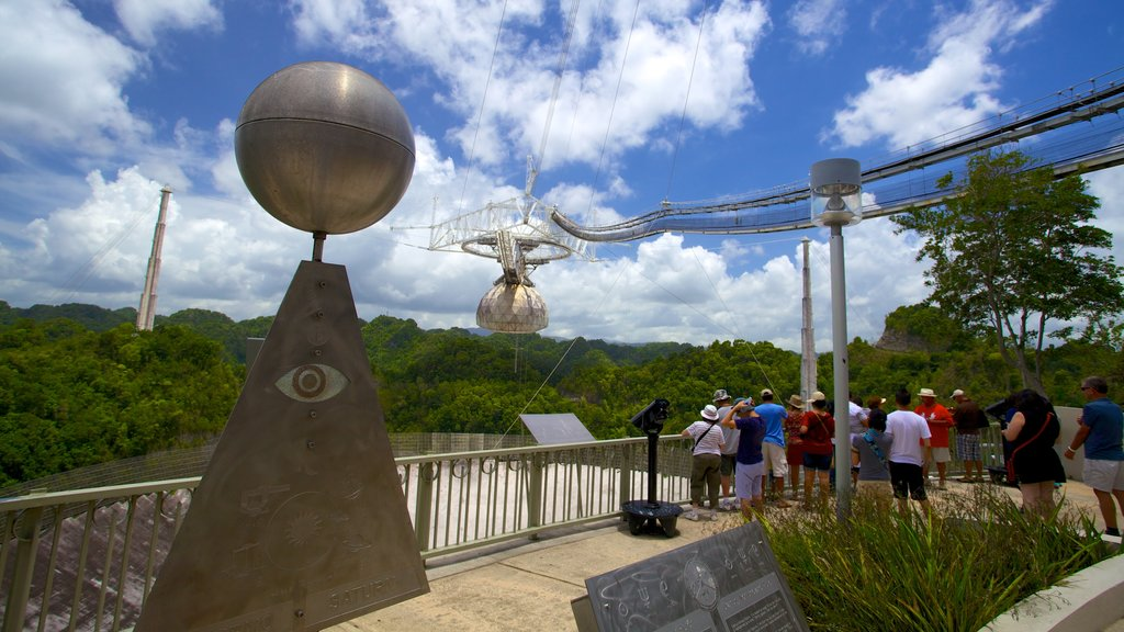 Arecibo Observatory which includes an observatory and forest scenes